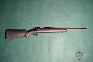 Remington_Polise_223_REM_exposure